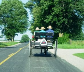 Amish Neighbors