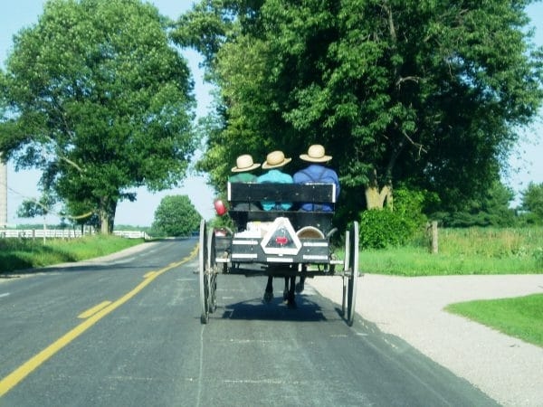 Explore More about Amish Neighbors